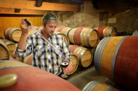 Steve, the winemaker